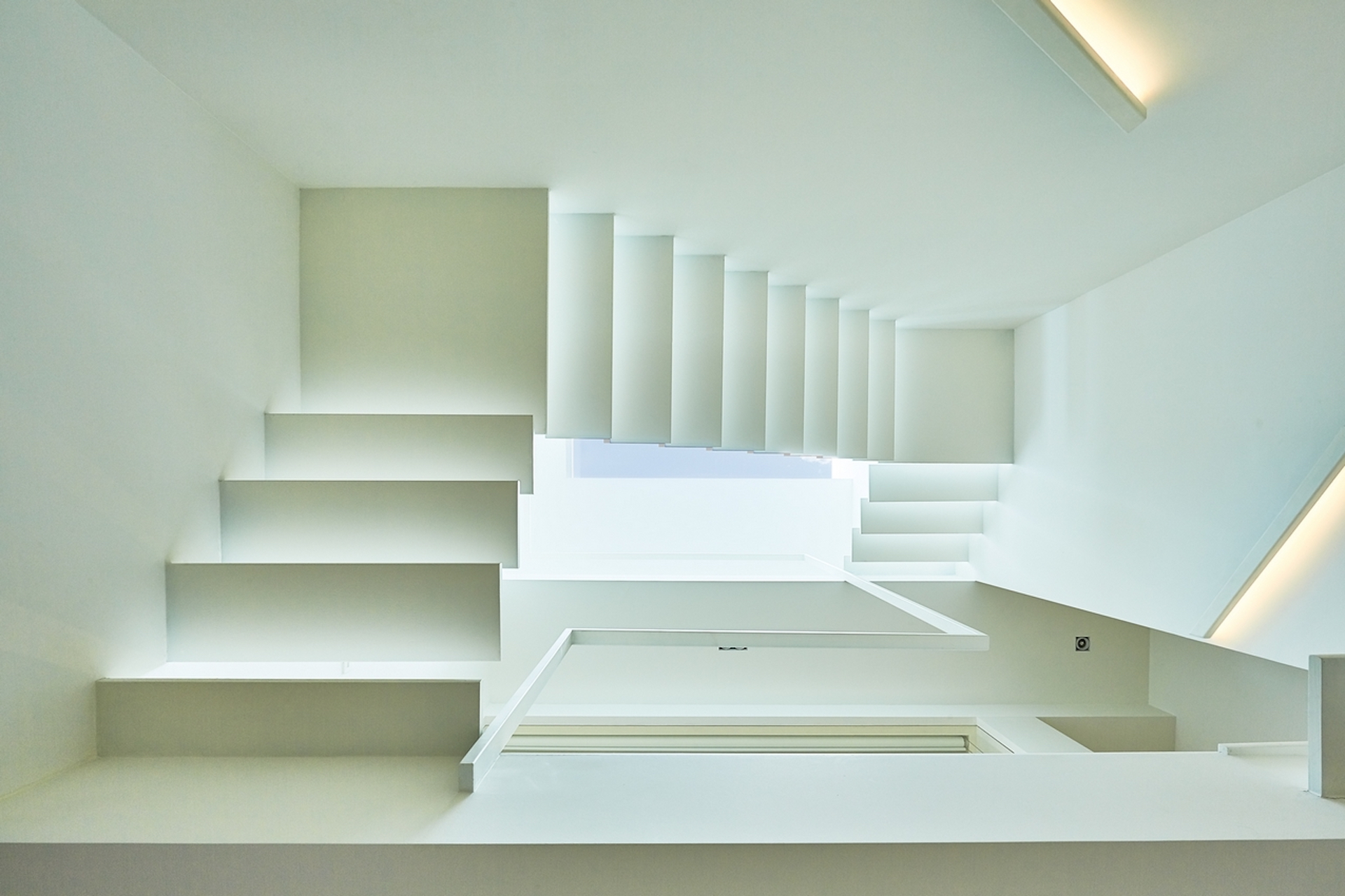calm and purity renovation for a Brussels residence